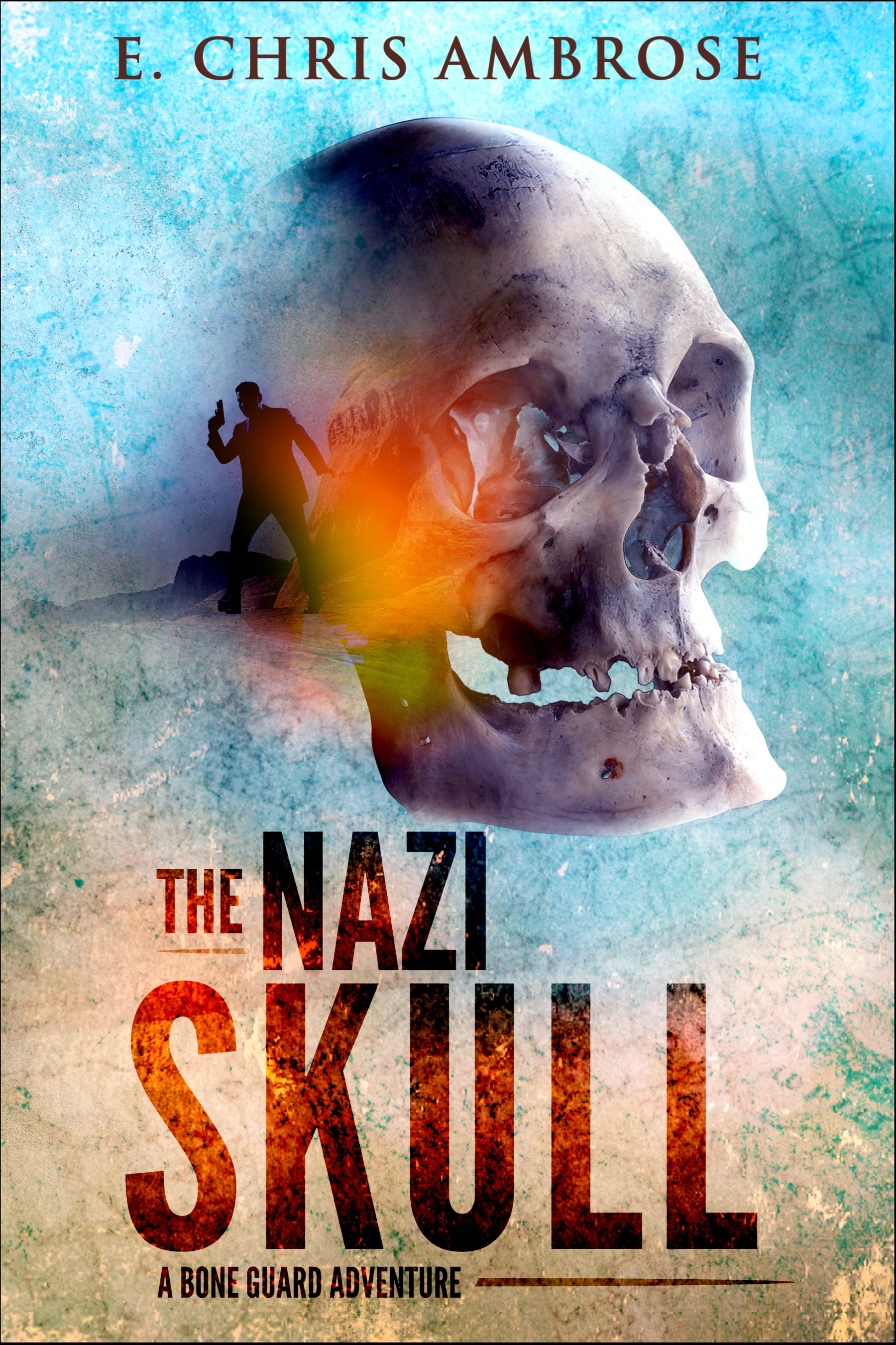 cover of The Nazi Skull novel
